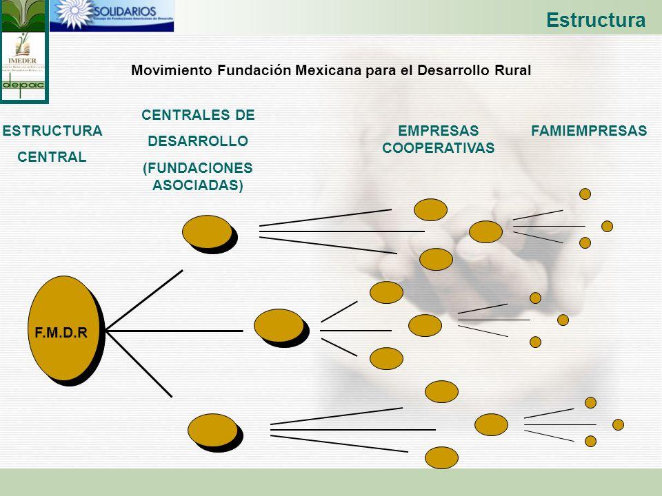 Movimiento Fundación Mexicana para el Desarrollo Rural ESTRUCTURA CENTRAL CENTRALES DE DESARROLLO (FUNDACIONES ASOCIADAS) EMPRESAS COOPERATIVAS FAMIEM