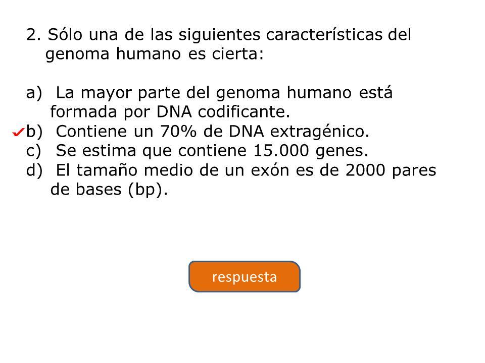 2. Sólo una de las siguientes características del genoma humano es cierta: a) La mayor parte del genoma humano está formada por DNA codificante. b) Co