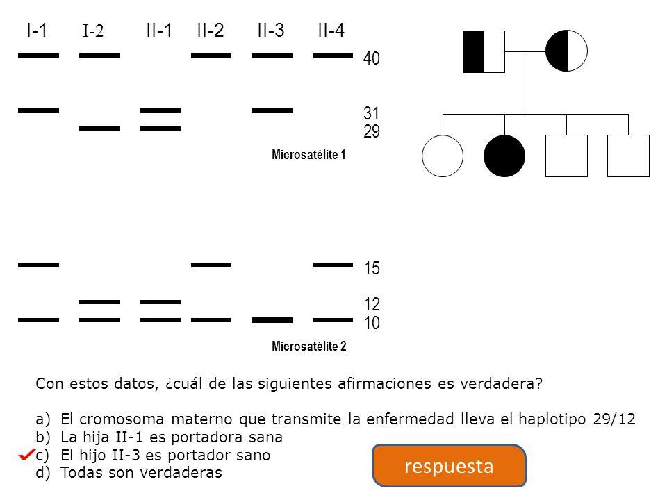 Microsatélite 1 Microsatélite 2 40 31 29 15 12 10 I-1 I-2 II-1II-2II-3II-4 Con estos datos, ¿cuál de las siguientes afirmaciones es verdadera.