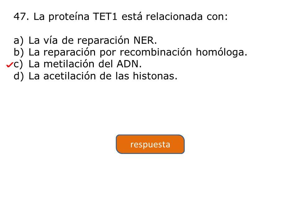 47.La proteína TET1 está relacionada con: a)La vía de reparación NER.