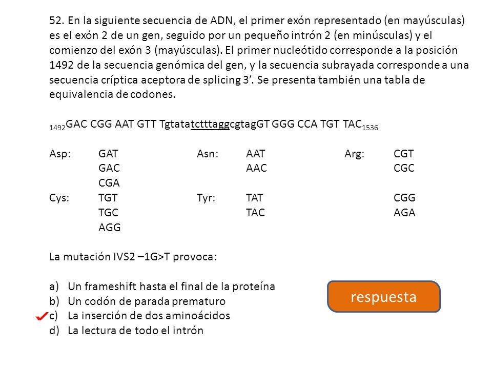52. En la siguiente secuencia de ADN, el primer exón representado (en mayúsculas) es el exón 2 de un gen, seguido por un pequeño intrón 2 (en minúscul
