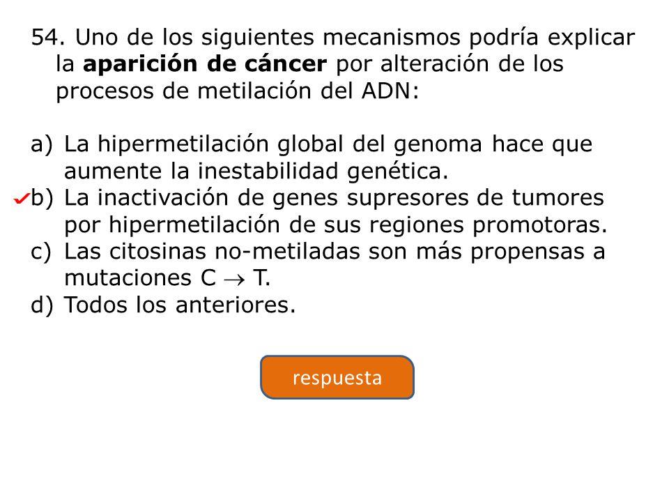54. Uno de los siguientes mecanismos podría explicar la aparición de cáncer por alteración de los procesos de metilación del ADN: a)La hipermetilación