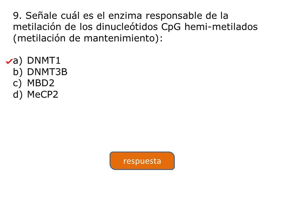 9. Señale cuál es el enzima responsable de la metilación de los dinucleótidos CpG hemi-metilados (metilación de mantenimiento): a)DNMT1 b)DNMT3B c)MBD