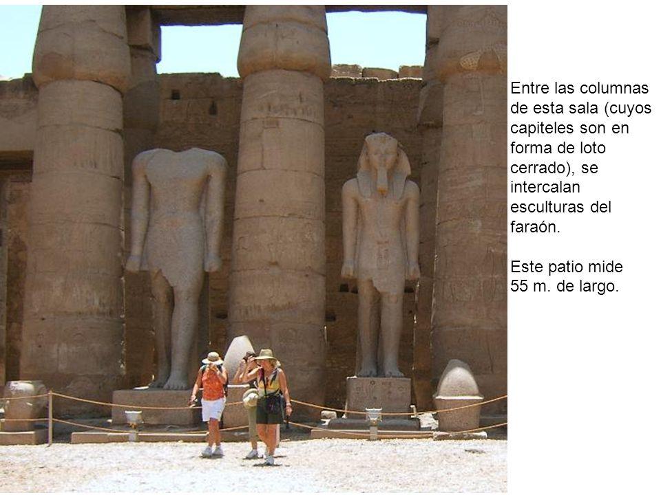 Entre las columnas de esta sala (cuyos capiteles son en forma de loto cerrado), se intercalan esculturas del faraón. Este patio mide 55 m. de largo.