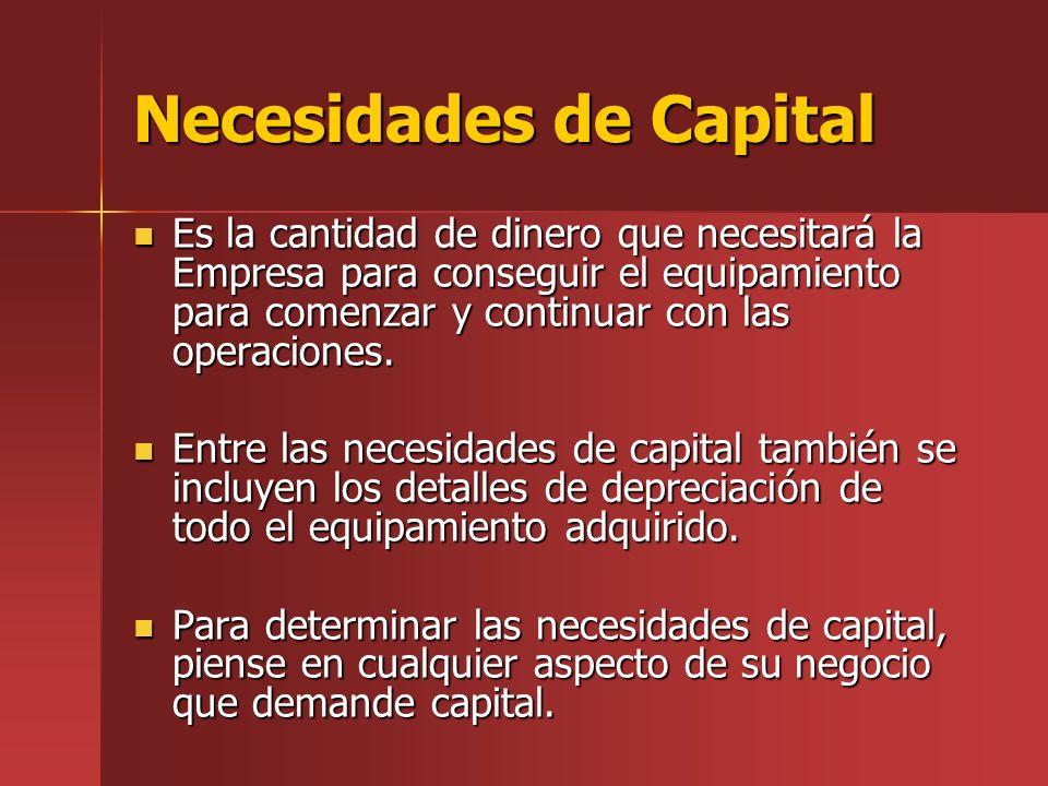 Necesidades de Capital Es la cantidad de dinero que necesitará la Empresa para conseguir el equipamiento para comenzar y continuar con las operaciones.