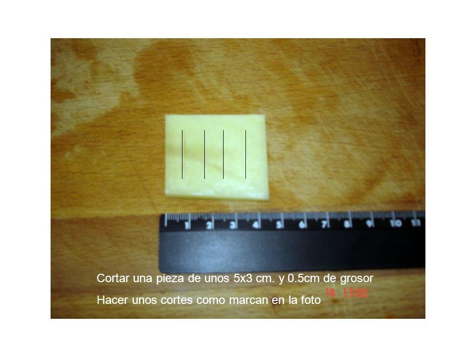 Cortar una pieza de unos 5x3 cm. y 0.5cm de grosor Hacer unos cortes como marcan en la foto