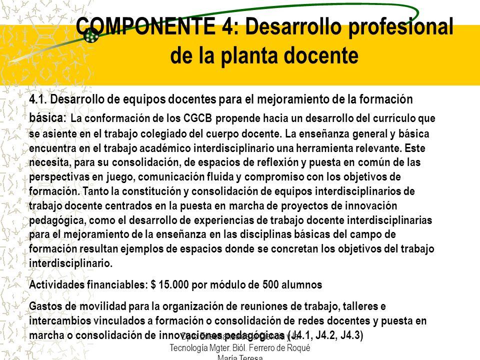 Dpto Enseñanza de la Ciencia y la Tecnología Mgter. Biól. Ferrero de Roqué María Teresa COMPONENTE 4: Desarrollo profesional de la planta docente 4.1.
