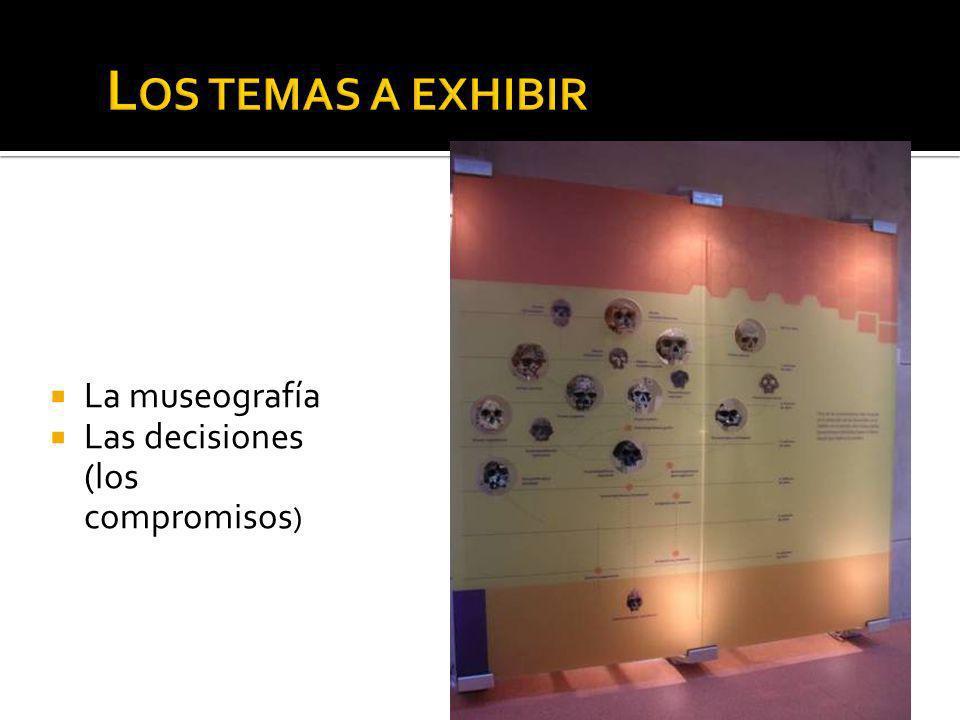 La museografía Las decisiones (los compromisos )
