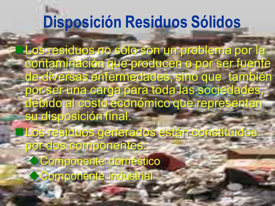 Disposición Residuos Sólidos Los residuos no sólo son un problema por la contaminación que producen o por ser fuente de diversas enfermedades, sino qu
