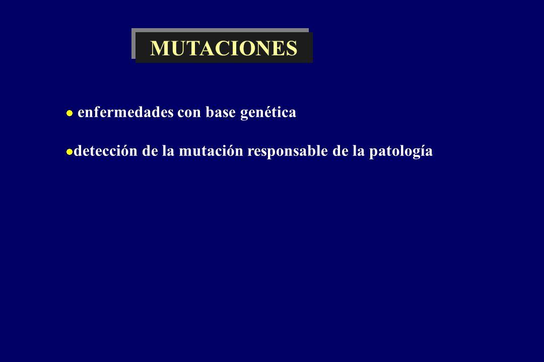 enfermedades con base genética detección de la mutación responsable de la patología MUTACIONES