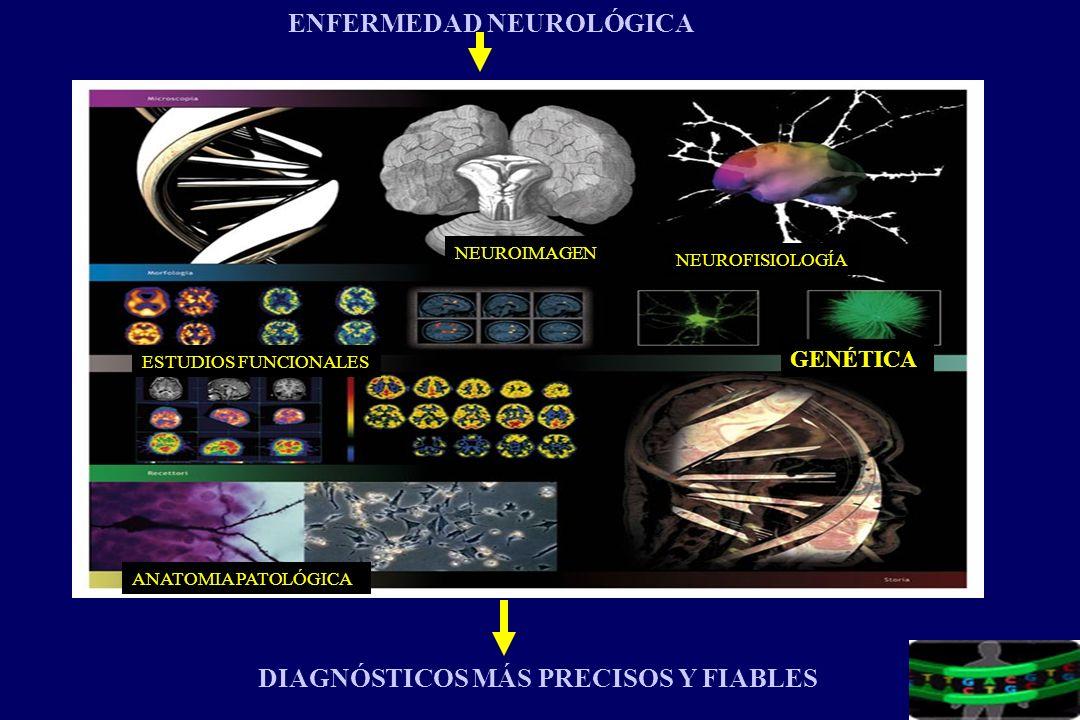GENÉTICA ESTUDIOS FUNCIONALES NEUROFISIOLOGÍA ANATOMIA PATOLÓGICA NEUROIMAGEN DIAGNÓSTICOS MÁS PRECISOS Y FIABLES ENFERMEDAD NEUROLÓGICA