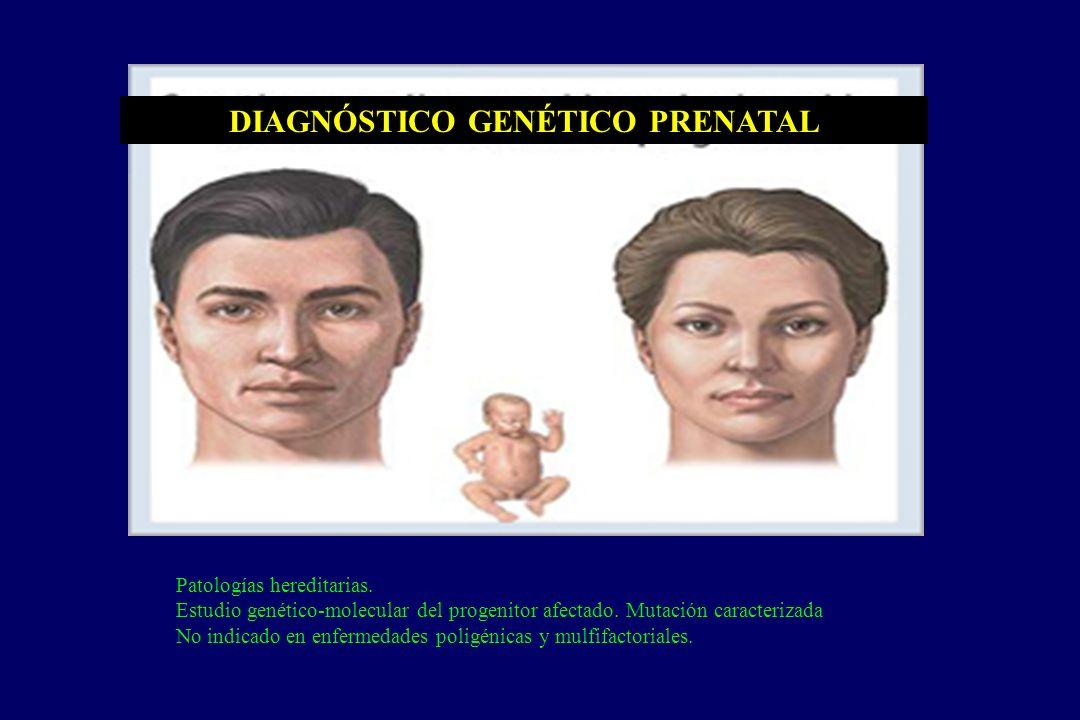 DIAGNÓSTICO GENÉTICO PRENATAL Patologías hereditarias.