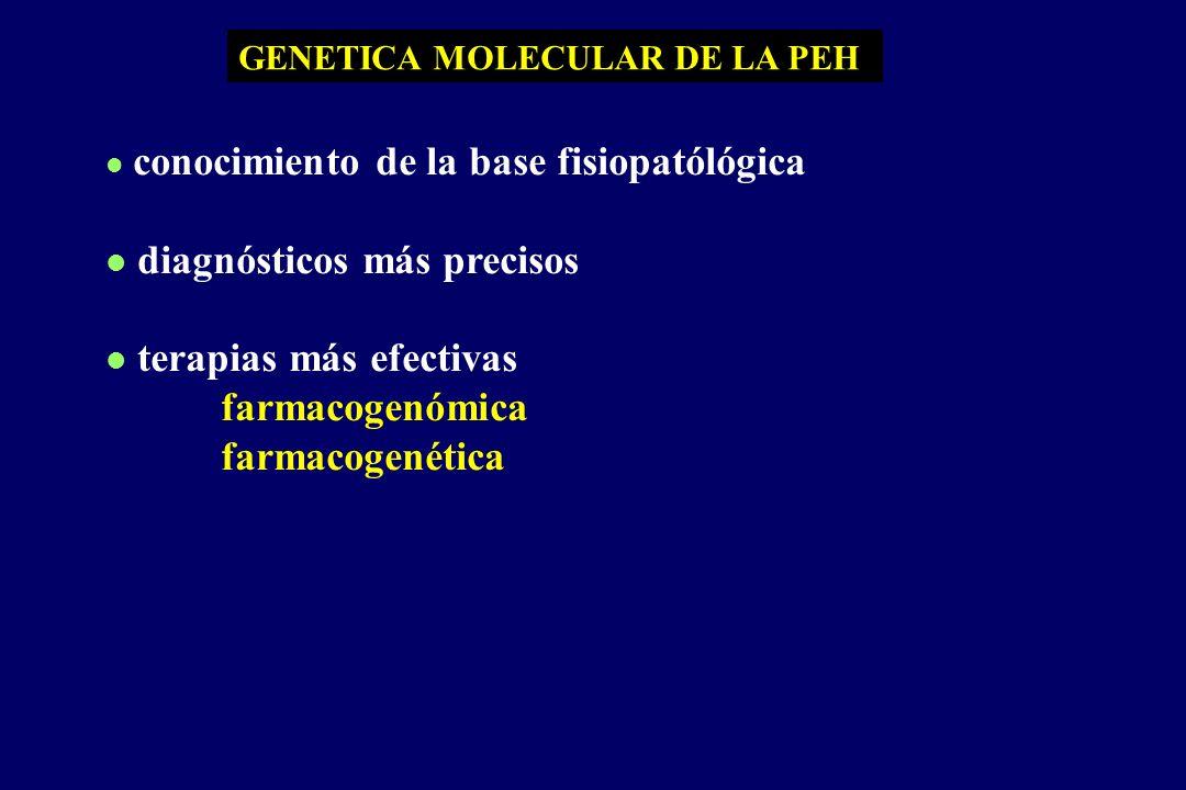 GENETICA MOLECULAR DE LA PEH l conocimiento de la base fisiopatólógica l diagnósticos más precisos l terapias más efectivas farmacogenómica farmacogenética