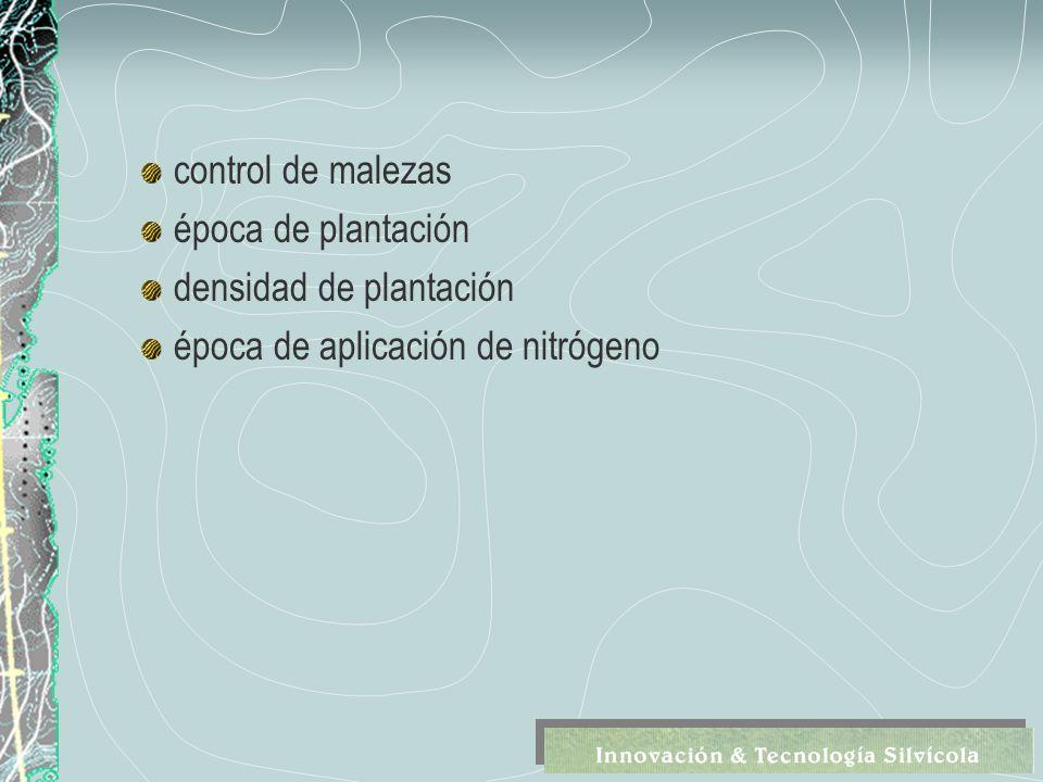 control de malezas época de plantación densidad de plantación época de aplicación de nitrógeno
