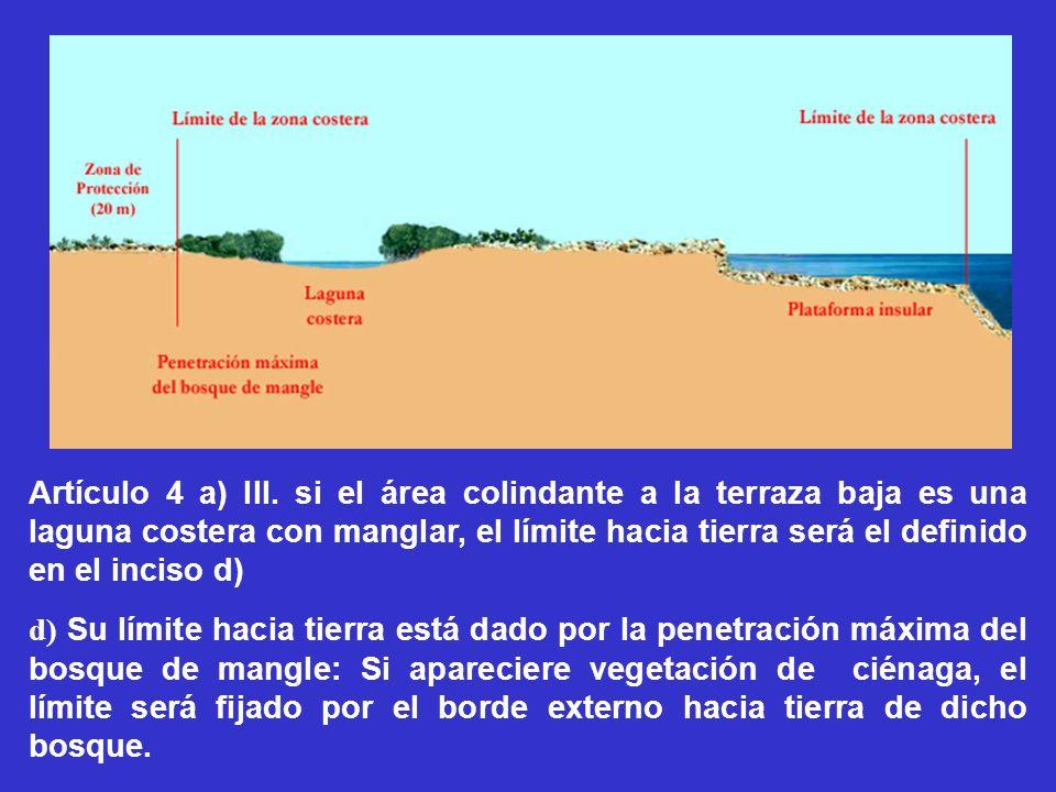 Artículo 4 a) III. si el área colindante a la terraza baja es una laguna costera con manglar, el límite hacia tierra será el definido en el inciso d)