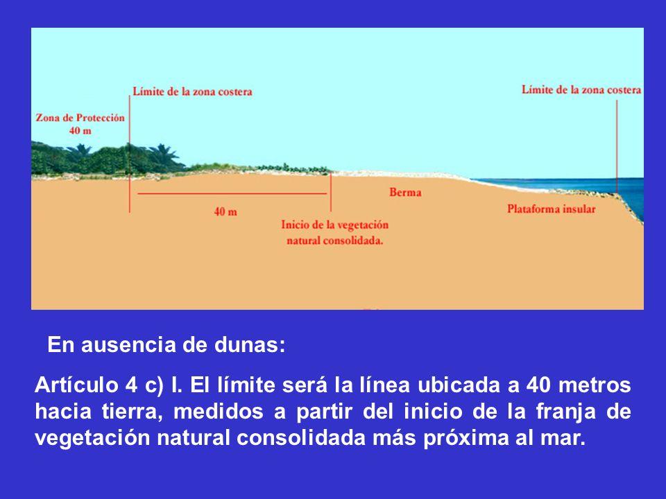 En ausencia de dunas: Artículo 4 c) I. El límite será la línea ubicada a 40 metros hacia tierra, medidos a partir del inicio de la franja de vegetació
