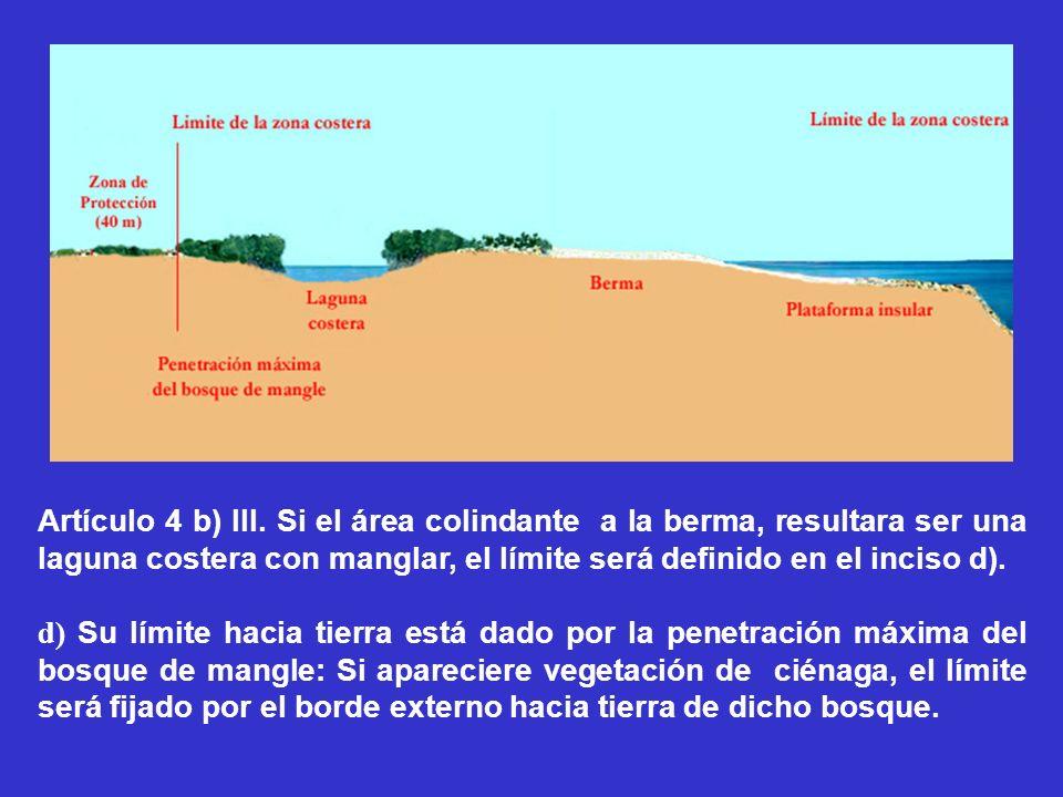 Artículo 4 b) III. Si el área colindante a la berma, resultara ser una laguna costera con manglar, el límite será definido en el inciso d). d) Su lími