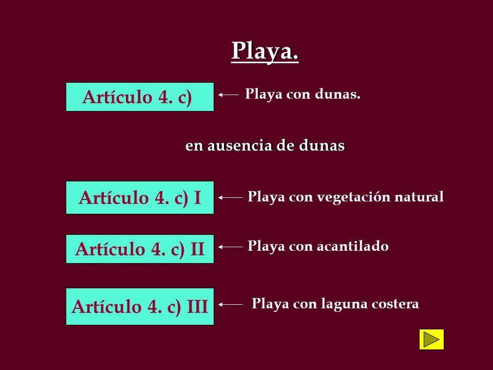 Playa. en ausencia de dunas Playa. en ausencia de dunas Artículo 4. c) Artículo 4. c) I Artículo 4. c) II Artículo 4. c) III Playa con dunas. Playa co