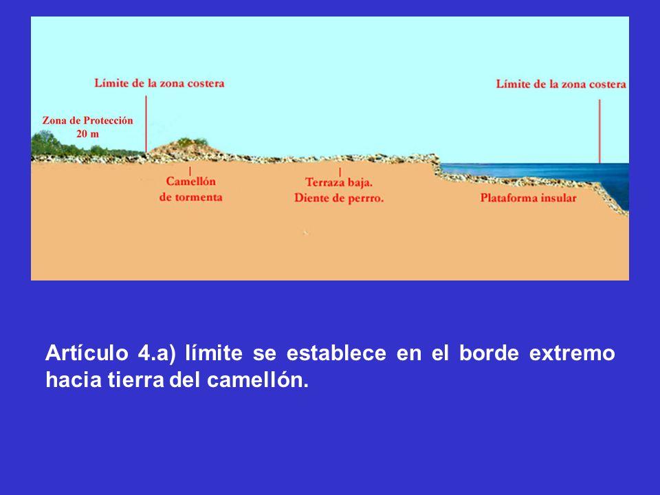 Artículo 4.a) límite se establece en el borde extremo hacia tierra del camellón.