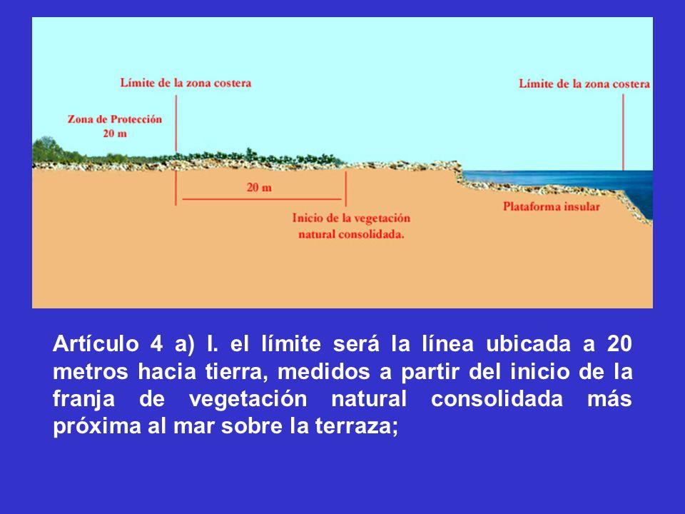 Artículo 4 a) I. el límite será la línea ubicada a 20 metros hacia tierra, medidos a partir del inicio de la franja de vegetación natural consolidada