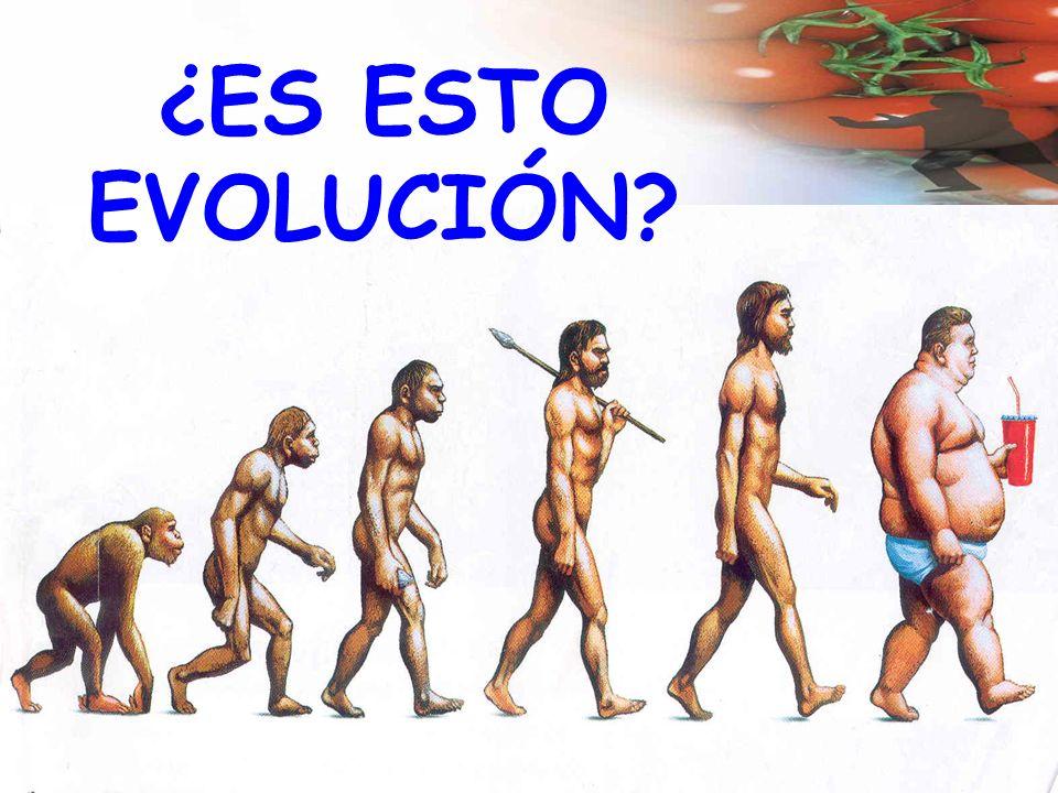¿ES ESTO EVOLUCIÓN?