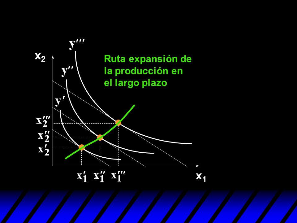x1x1 x2x2 Ruta expansión de la producción en el largo plazo