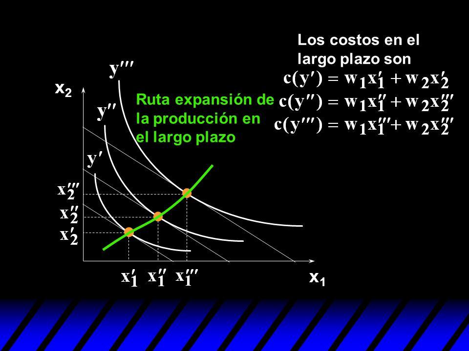 x1x1 x2x2 Los costos en el largo plazo son Ruta expansión de la producción en el largo plazo