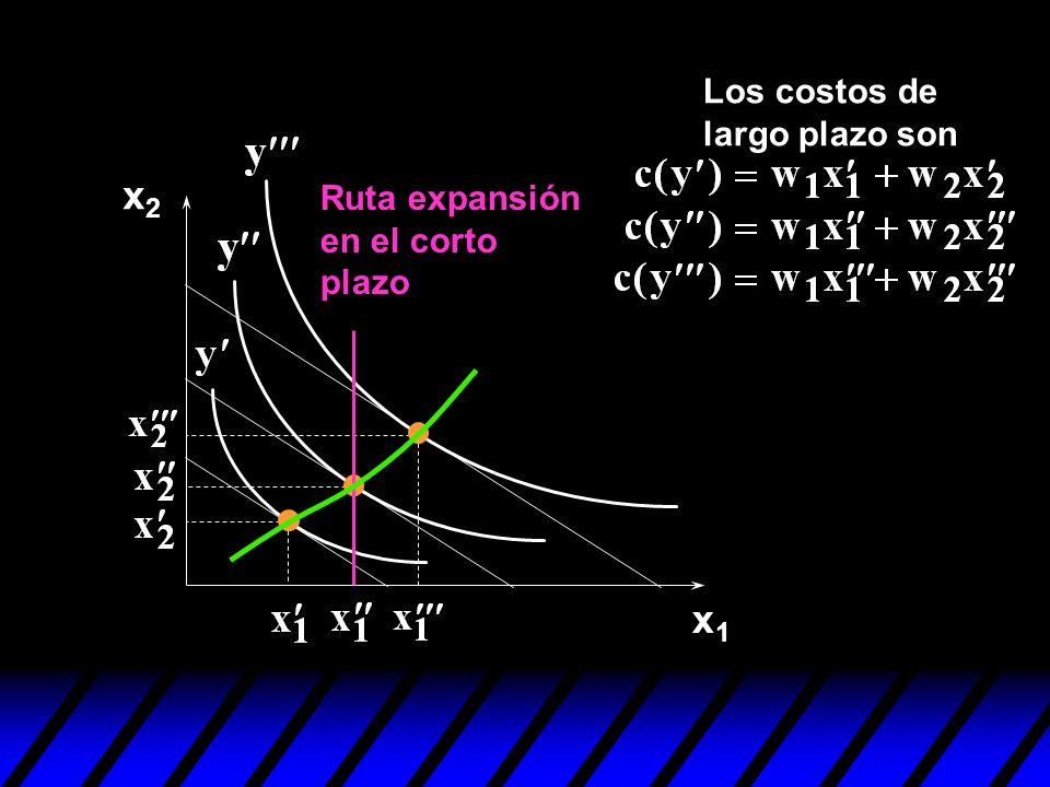 x1x1 x2x2 Ruta expansión en el corto plazo Los costos de largo plazo son