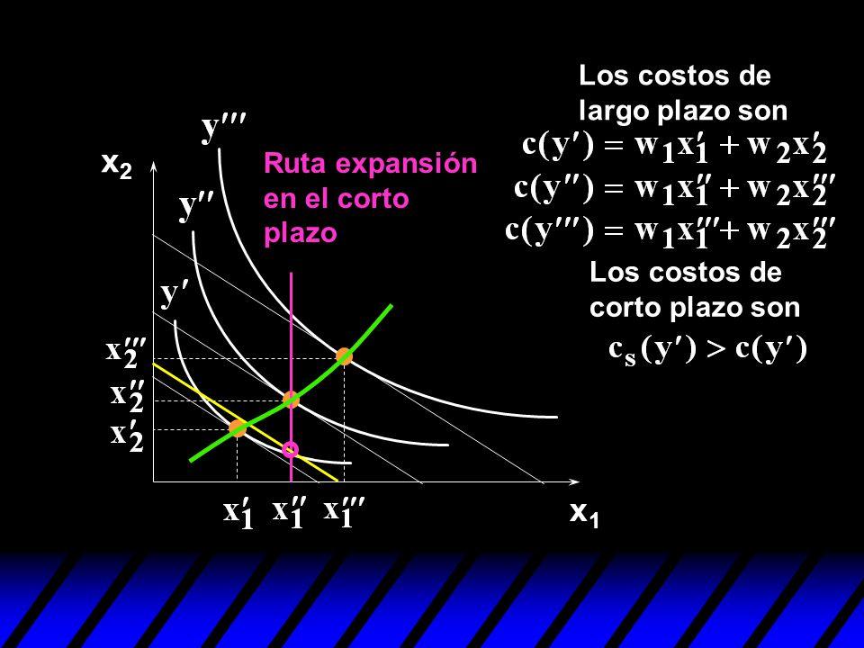 x1x1 x2x2 Los costos de corto plazo son Ruta expansión en el corto plazo Los costos de largo plazo son
