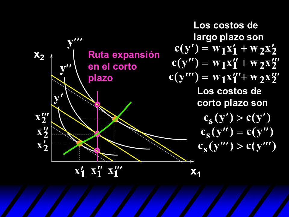 x1x1 x2x2 Ruta expansión en el corto plazo Los costos de largo plazo son Los costos de corto plazo son