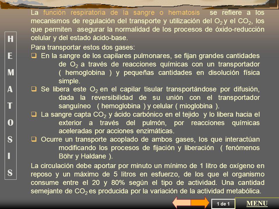 La presión parcial ( Pp ) de un gas depende de la presión barométrica ( Pb ), de la composición de la mezcla ( Fi ) y del grado de humectación del gas.
