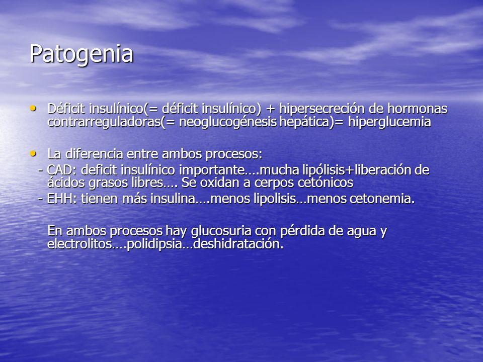 Patogenia Déficit insulínico(= déficit insulínico) + hipersecreción de hormonas contrarreguladoras(= neoglucogénesis hepática)= hiperglucemia Déficit