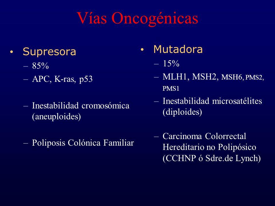Vías Oncogénicas Supresora –85% –APC, K-ras, p53 –Inestabilidad cromosómica (aneuploides) –Poliposis Colónica Familiar Mutadora –15% –MLH1, MSH2, MSH6