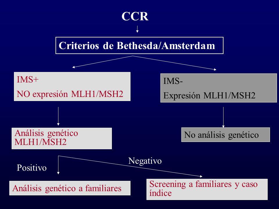 CCR Criterios de Bethesda/Amsterdam IMS+ NO expresión MLH1/MSH2 IMS- Expresión MLH1/MSH2 Análisis genético MLH1/MSH2 Análisis genético a familiares No