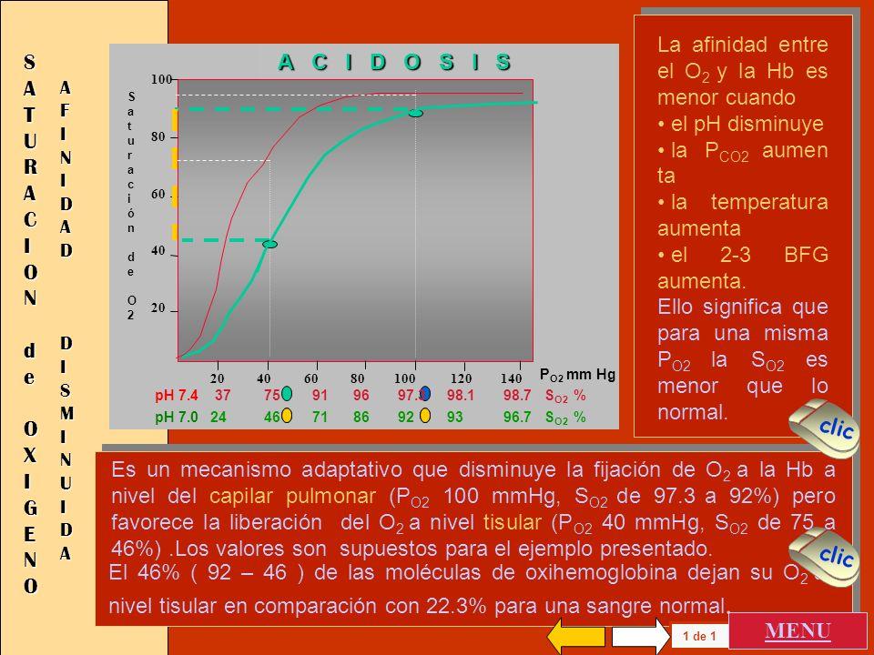 La afinidad entre el O 2 y la Hb es mayor cuando el pH aumenta la P CO2 disminu ye la temperatura disminuye el 2-3 BFG disminuye Ello significa que pa