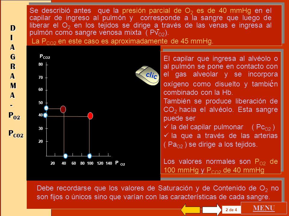 20 40 60 80 100 120 140 P O2 80 70 60 50 40 30 20 P CO2 Con la curva de disociación de la O 2 Hb se describió la relación entre la P O2 y el O 2 trans