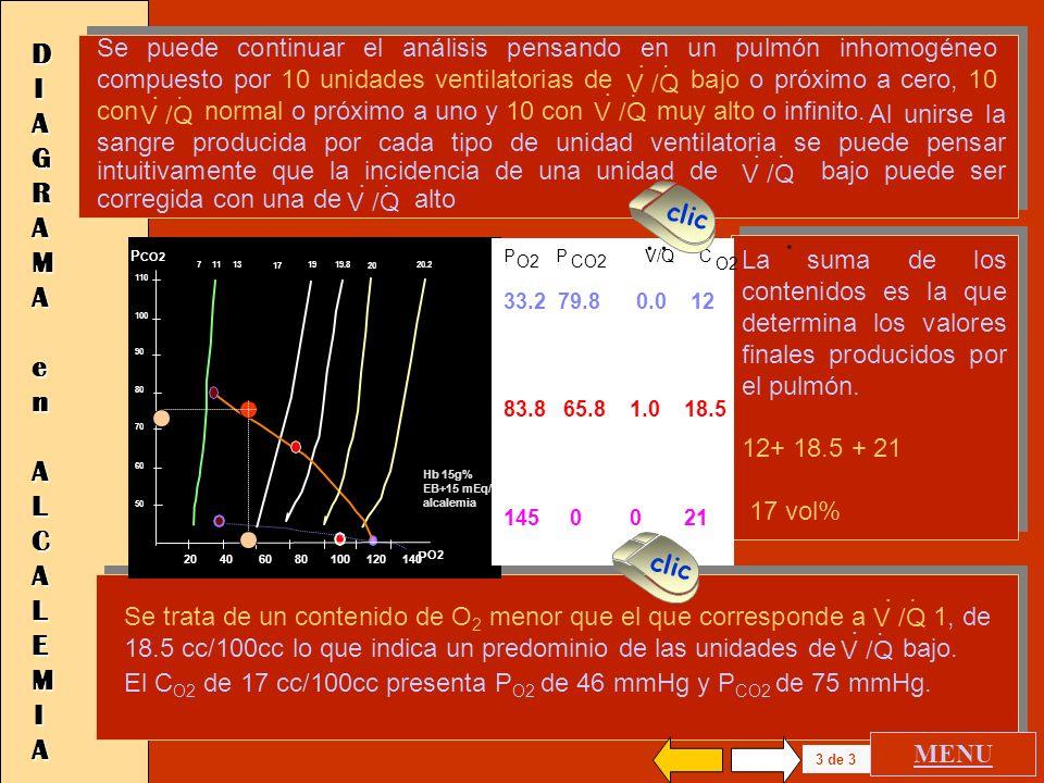 20.2 20 40 60 80 100 120 140 P O2 110 100 90 80 70 60 50 P CO2 1720 19.819711 13 Hb 15g% EB+15 mEq/l pH al calino P O2 P CO2 V/Q 33.2 79.8 0.0 73.5 68