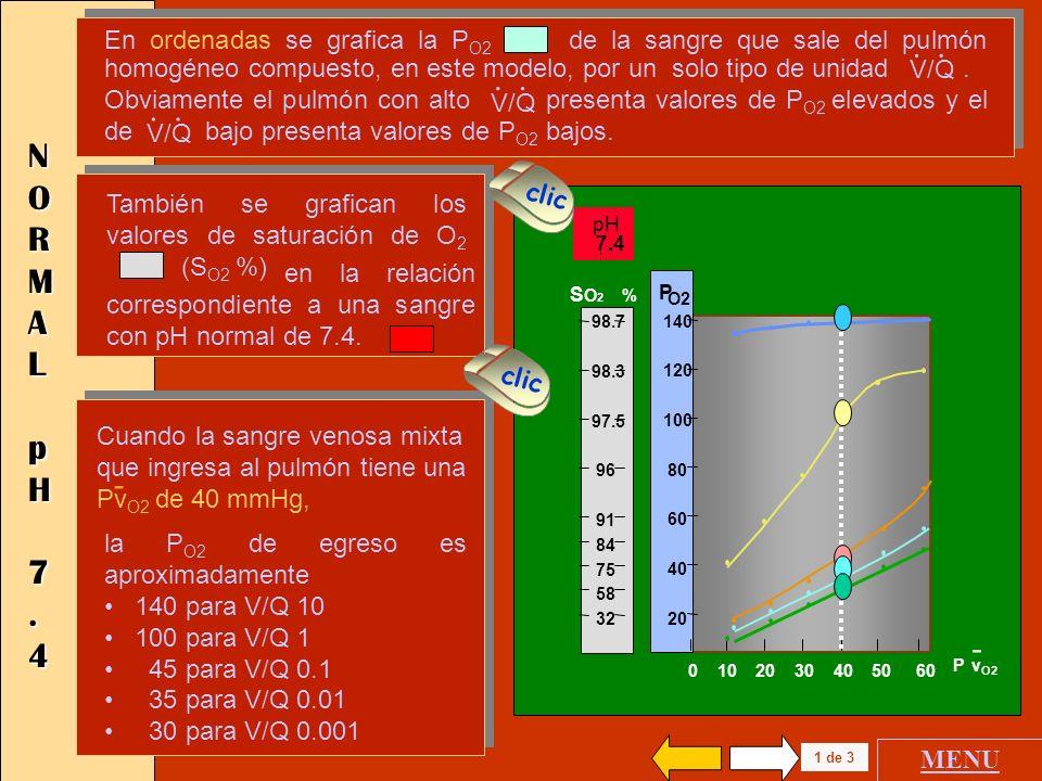 0 10 20 30 40 50 60 Pv O2 140 120 100 80 60 40 20 P O2 - V / Q.. 10 1 0.1 0.01 0.001 SANGRE VENOSA MIXTASANGRE VENOSA MIXTASANGRE VENOSA MIXTASANGRE V