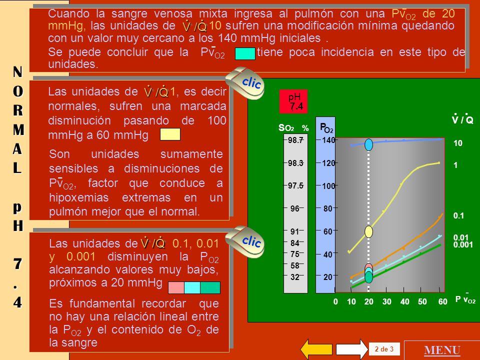 0 10 20 30 40 50 60 Pv O2 140 120 100 80 60 40 20 P O2 - NORMAL NORMALNORMAL NORMAL pHpHpHpH 7.4 7.4 7.4 7.4 También se grafican los valores de satura