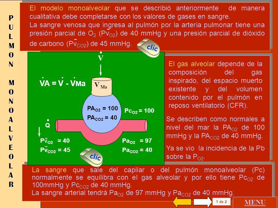 PULMON MONOALVEOLAR CIRCULACION Y VENTILACION NORMAL CIRCULACION SIN VENTILACION VENTILACION SIN CIRCULACION PULMON MONOALVEOLAR CIRCULACION Y VENTILA