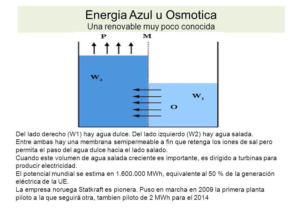 Energia Azul u Osmotica Una renovable muy poco conocida Del lado derecho (W1) hay agua dulce.