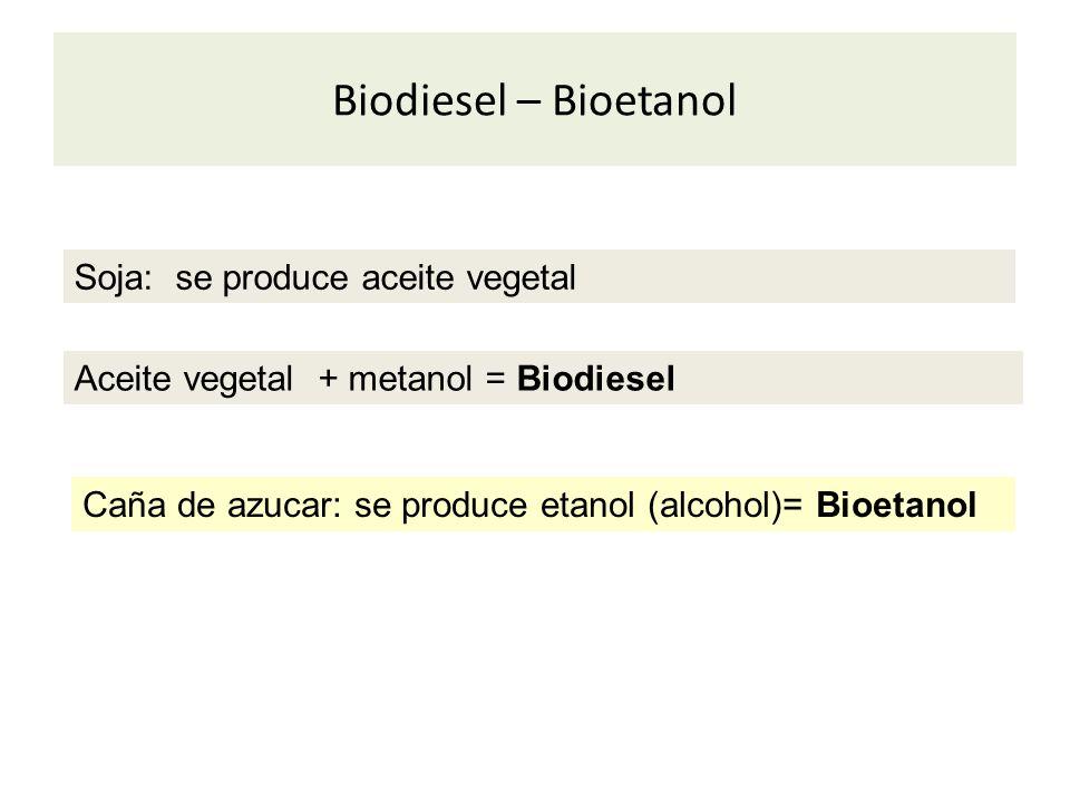 Biodiesel – Bioetanol Aceite vegetal + metanol = Biodiesel Caña de azucar: se produce etanol (alcohol)= Bioetanol Soja: se produce aceite vegetal