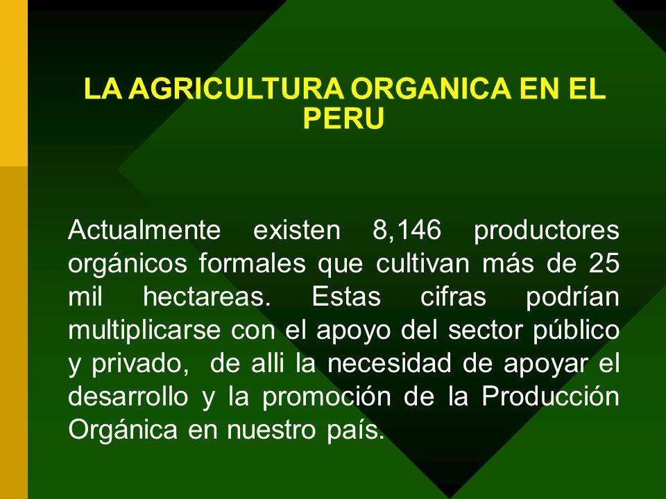 LA AGRICULTURA ORGANICA EN EL PERU Actualmente existen 8,146 productores orgánicos formales que cultivan más de 25 mil hectareas. Estas cifras podrían