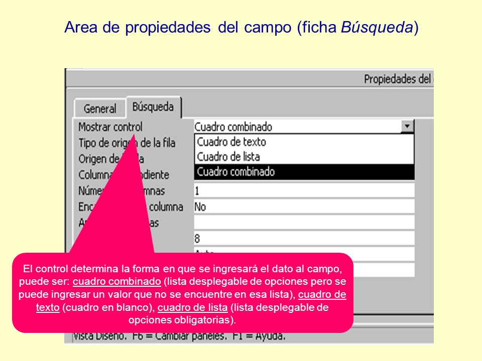 El control determina la forma en que se ingresará el dato al campo, puede ser: cuadro combinado (lista desplegable de opciones pero se puede ingresar