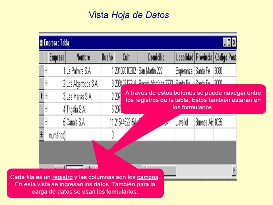 Cada fila es un registro y las columnas son los campos. En esta vista se ingresan los datos. También para la carga de datos se usan los formularios. A