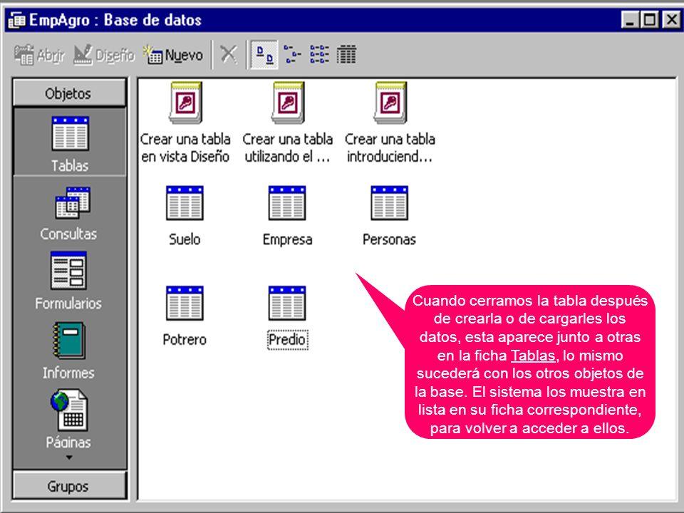 Cuando cerramos la tabla después de crearla o de cargarles los datos, esta aparece junto a otras en la ficha Tablas, lo mismo sucederá con los otros o