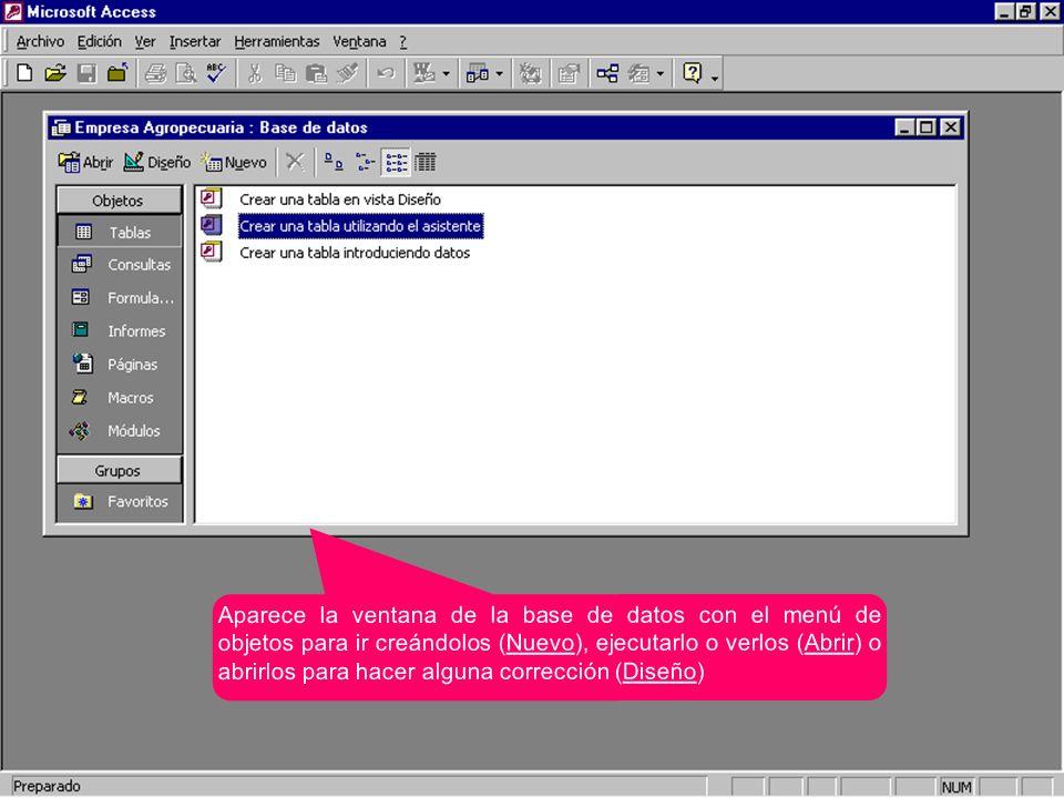 Aparece la ventana de la base de datos con el menú de objetos para ir creándolos (Nuevo), ejecutarlo o verlos (Abrir) o abrirlos para hacer alguna cor
