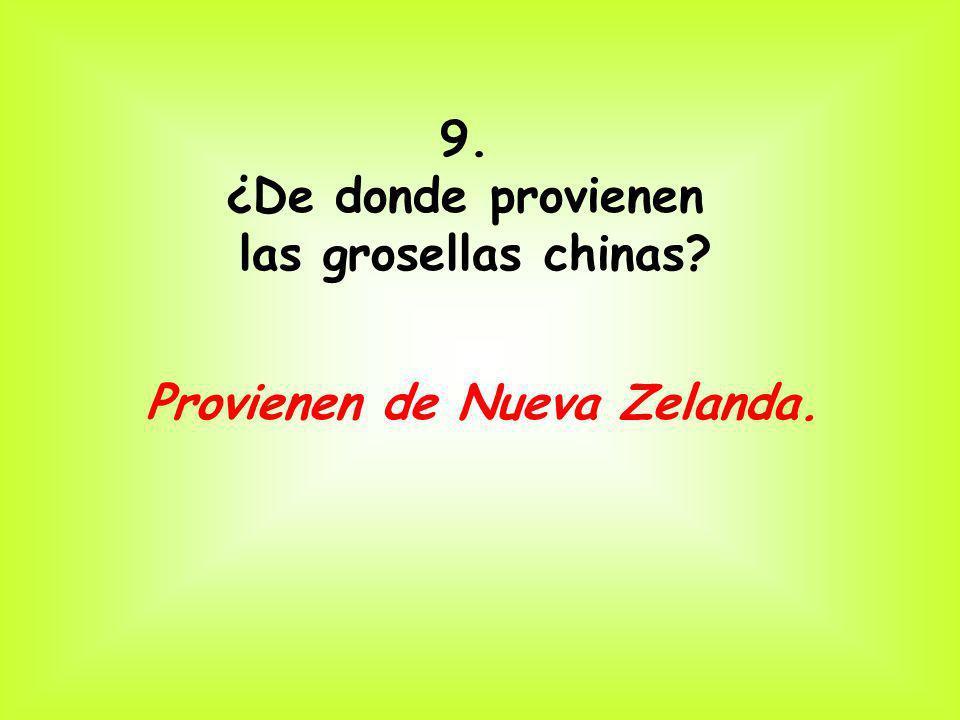 9. ¿De donde provienen las grosellas chinas? Provienen de Nueva Zelanda.