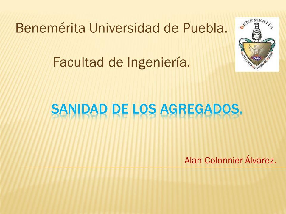 Alan Colonnier Álvarez. Benemérita Universidad de Puebla. Facultad de Ingeniería.