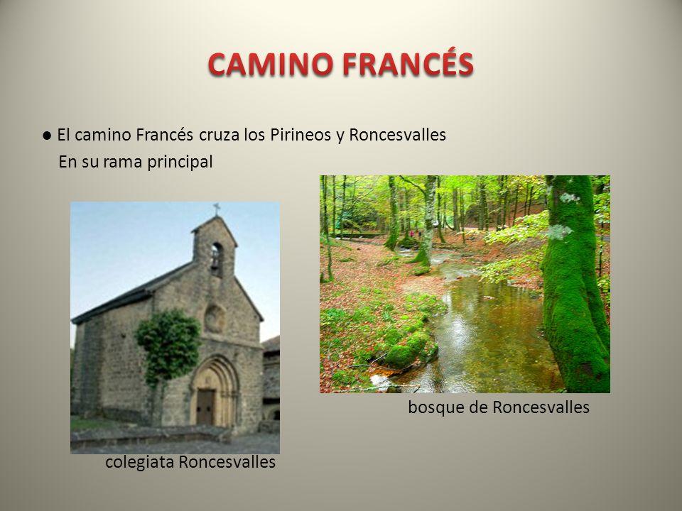 El camino Francés cruza los Pirineos y Roncesvalles En su rama principal bosque de Roncesvalles colegiata Roncesvalles